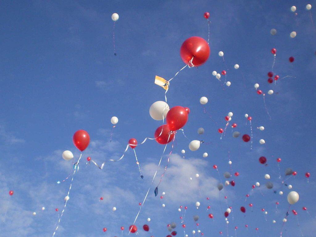 AIVM E Il Suo Compleanno! Tre Anni Con Le Vittime Di Malagiustizia