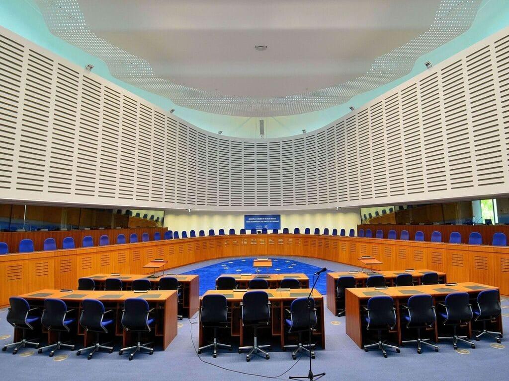 Ricorso Alla Corte Europea Dei Diritti Dell'Uomo | aivm.it