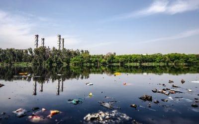 I Delitti Contro L'Ambiente