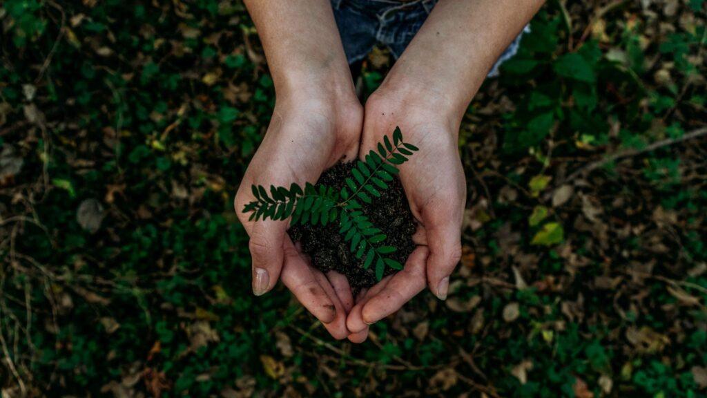 diritto ambientale